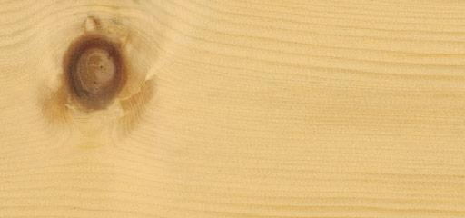 Wandverkleidung Holz Englisch ~ Holzarten Zirbe  proHolz Austria